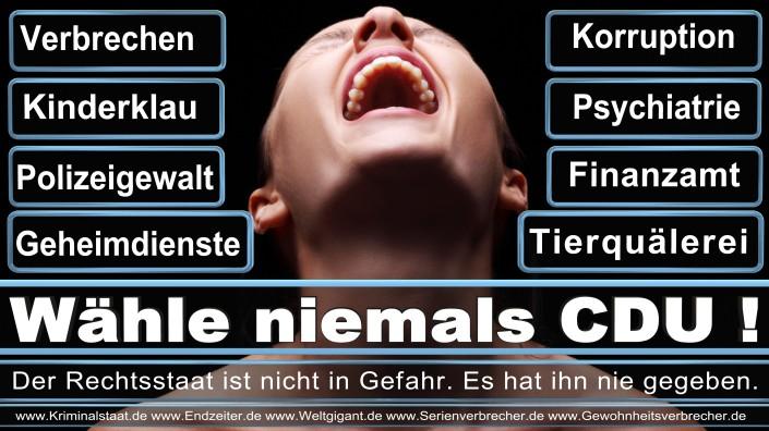 Landtagswahl 2017 NRW CDU SPD FDP AfD NPD Piraten Die Linke, Elmar Brok, SPD, AfD, Piratenpartei, Linke, Bundestagswahl, 2021